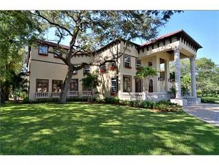 Modern European Inspired Castle - South Tampa FL