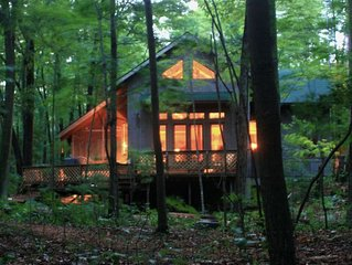 EaglePine, Sleeping Bear Dunes, Lakefront, secluded, sand beach, dog friendly!