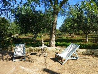 Grand casale avec trullo , et piscine au milieu d'une oliveraie.