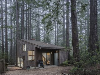 Architectural gem w/ private hot tub, redwood views & shared pools - 1 dog OK!