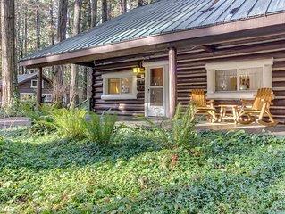 Restored log cabin w/ classic porch - near river, trails, hot springs, & more