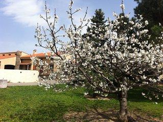 'La Maison Catalane'4/5/6/7/8 pers,Prix dégressif, jardin 2800 M2, piscine,clim
