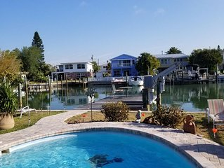 Dolphins and Manatees in Your Backyard!