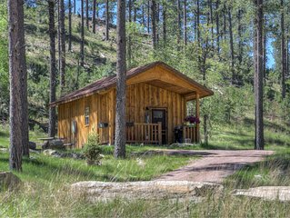 Custom Black Hills Cabin - minutes to Mt Rushmore, mountain setting, 10 acres
