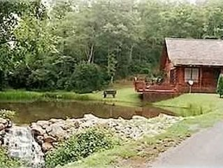Bear Necessity Log Cabin - Trout Pond, Waterfall, holiday rental in Murphy