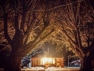 Antique Farm Cabin on 10 acres
