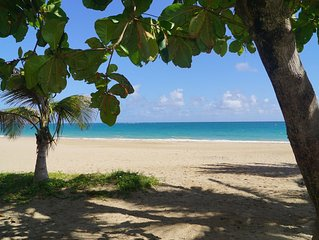 Steps to beautiful Ocean Park beach!
