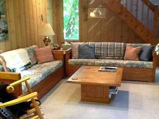 Chimney Hill -Cozy Family Vermont  Home - 15 min to Mt. Snow and Area Lakes