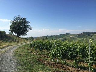 Casa panoramica affacciata sui vigneti tra Nizza Monferrato e Acquiterme.