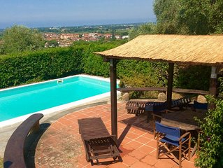 Paradise among olive trees with swimming pool