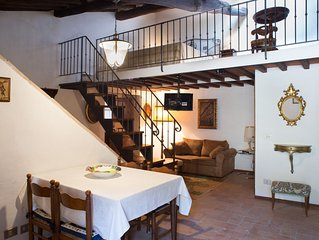 San Gimignano apartment 9,  full center, fast wifi free, lovely courtyard