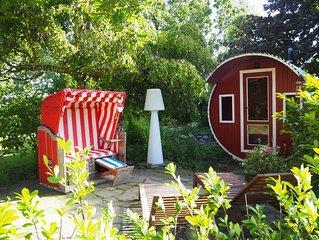 Ferienhaus direkt am Deich mit Gartensauna mit einem riesigen Garten