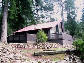 Mountain View * Borders National Forest * Sleeps 9 * H.T. * WIFI