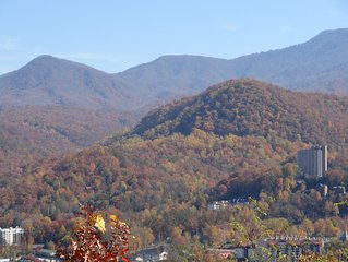 Have 2020 Vision at This Mountain Top Resort in Gatlinburg, TN  !!!!!
