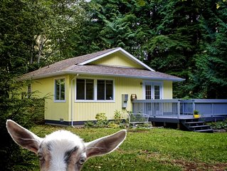 Diamond Cottage, close to Sooke, Shirley and Port Renfrew. 40 mins to Victoria