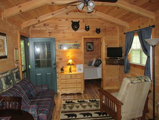 Clean, private cabin, convenient to downtown Waynesville; 1 of 2 cabins