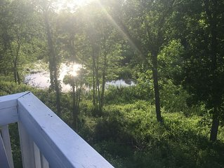 Porches, birds, pool, deep brook leading to Saco River & 10 min. to the ocean!