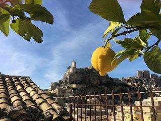 Artfully restored, marble floor villa, fruit trees, private garden, city view