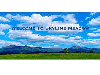 This is the view from Skyline Meadow!