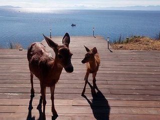 Savary Island summer retreat