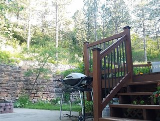 4 br home: walking distance to downtown Rapid City & easy access to Black Hills