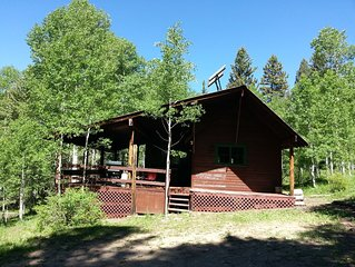Cabin in the Woods at 9,000 ft