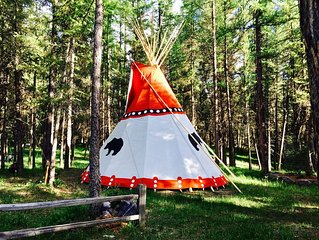 Spotted Bear tipi #5
