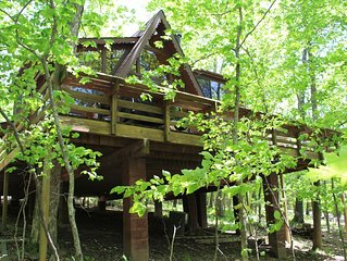 Lovely Tree House Innsbrook Getaway! - Lake Aspen Access!