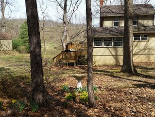 Juniata Cabin - early spring