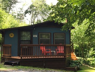 Dog friendly; Family friendly; Secluded; 30 min to Asheville