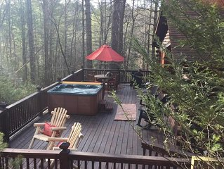 Cozy Log Cabin with Amazing Outdoor Living Areas Near Ellijay River