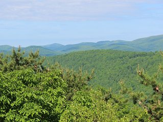 Fabulous Mountain View in 4 Bedroom Retreat at Wintergreen-Winter getaway!!