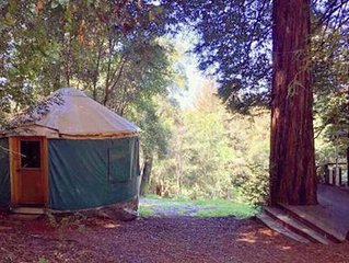 Redwood Hideaway Yurt at Mountain Top Eco- Retreat