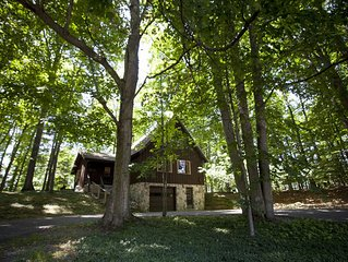 Treehouse - Spacious Chalet Near Torch Lake & Town of Bellaire