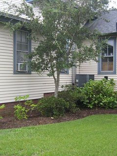 Roomy Island-Cottage in the Heart of Historic Manteo. Waterfront steps away.