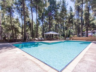 Villa with a swimming pool, within pine forest