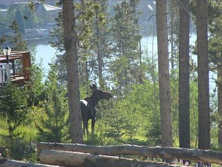 Million Dollar View Cabin on 1 Acre 1 Mile from Town.