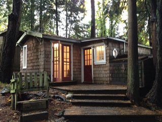 Oceanside Cottage in the Trees - stunningly private, yet so central!