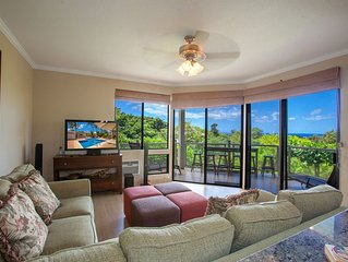 Amazing 3 Bedrooms / 2 Bath condo with Ocean Views in Wailea, Maui!