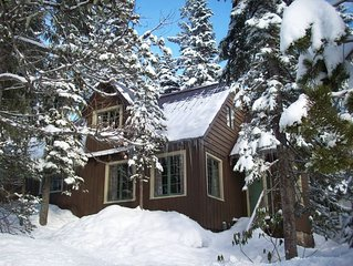 Heart of village!  Stone fireplace, knotty pine interior, a real cabin!