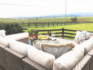 Sonoma County Modern Farmhouse, Views, Vineyards, Hot Tub & Sonoma Speedway