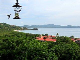 Million Dollar Ocean Views in Flamingo- Best New Year's Location & Price!