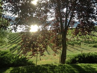 Naramata – Stunning Views of Vineyards And Sunsets