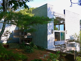 Light-Filled Cape Modern Overlooking the Woods (Truro)