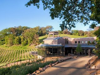 Gustafson Family Vineyards, Luxurious Estate Vineyard & Winery