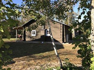 Cabin by Brevort Lake, #1