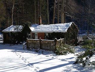 Ivy Cottage -Central Pennsylvania-Creekside