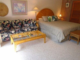 Beautiful Condo at a Great Price (from $110!) & Location, Prince Kuhio