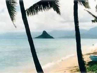Paradise is Beachfront on the Northeast Shore Ka'a'awa!, vacation rental in Punaluu