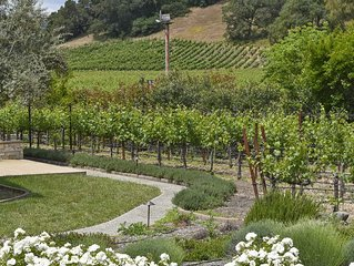 Stunning  Vineyard View Home on Iconic Silverado Trail in Beautiful Napa Valley